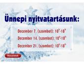 Ünnepi Nyitvatartás 2013. december