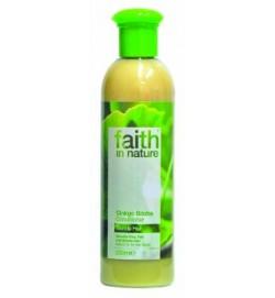 Ginkgo biloba kondicionáló (250ml) - Világos vagy szőke hajra